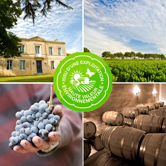 Découvrez le Château Rousselle et sa cave à vin. Un large choix de bouteilles au juste prix, qui plaira aux amateurs de produits authentiques.